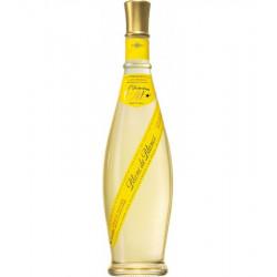Clos Mireille-Côtes de Provence OTT Blanc de Blancs 75cl - pack de 6