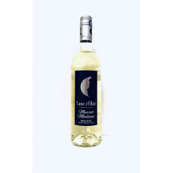 Vin Muscat Moelleux LUNEL D'ELLES blanc 0.75l - Pack de 6